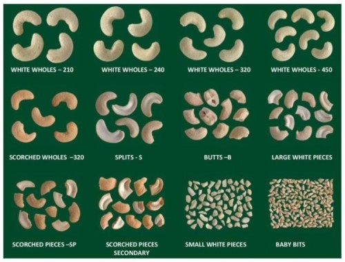 Classification of cashew nuts